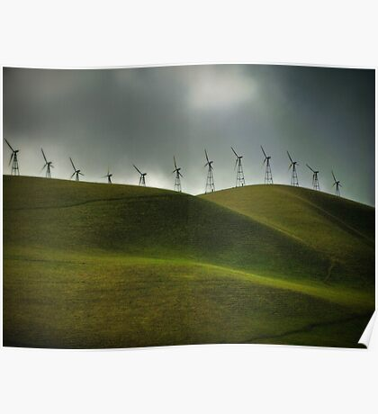 windswept Poster