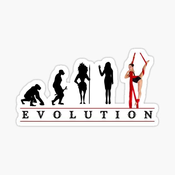 Womens Aerial Silk Evolution of Woman Sticker