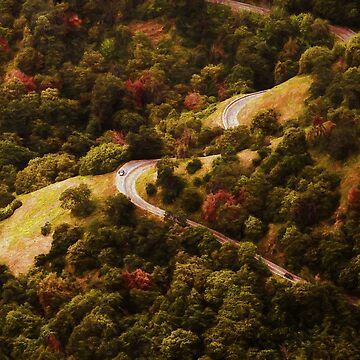 Scenic Mountain Road by quokkacreative