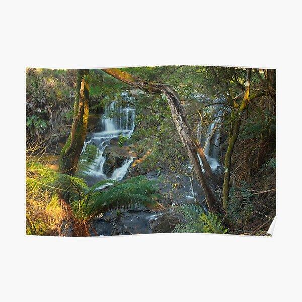 Upper Turtons Creek Falls Poster