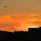 Sunset Over Jersey 4 by joan warburton