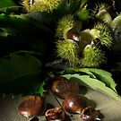Autumn Chestnuts by Ann Garrett