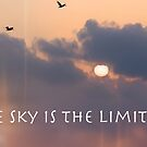 The Sky is the Limit! by lisapowell