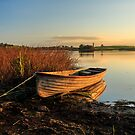 Lough Erne Shore by Adrian McGlynn