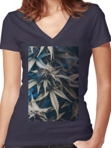 Weed indica sativa cannabis design floral hemp marijuana Women's Fitted V-Neck T-Shirt