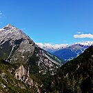 Ortler Group by heinrich