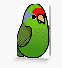 Too Many Birds! - Red Crowned Amazon Greeting Card
