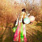 Gypsy Lanterns in Autumn by evon ski