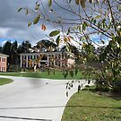 Milligan Village at Milligan College by Ann Palmieri