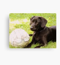 Dog #3 Canvas Print