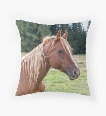 ein braunes Pferd Kissen