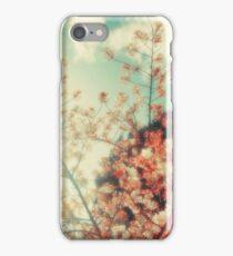 DELIAN DRONE iPhone Case/Skin
