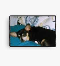 Sweet Missy Girl Canvas Print