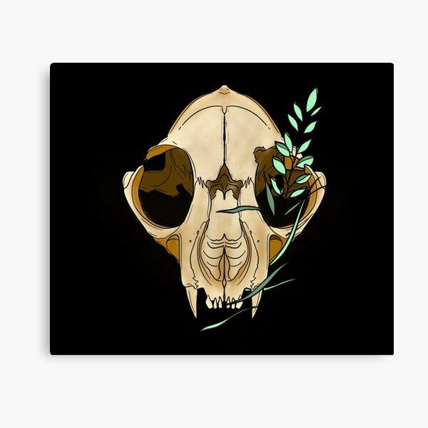 Feline Skull Canvas Print
