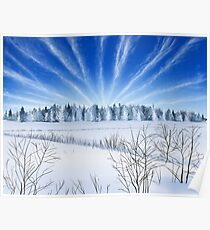 Winter Countryside Field Poster