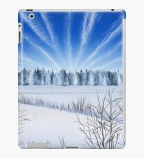Winter Countryside Field iPad Case/Skin