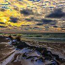 Sand, Snow, & Sunsets by Shari Galiardi