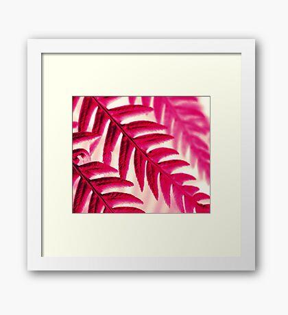 Nature Pattern # 1 - Fern (Red Pink) Framed Print