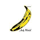 The Velvet Underground & Nico by vulpixie4
