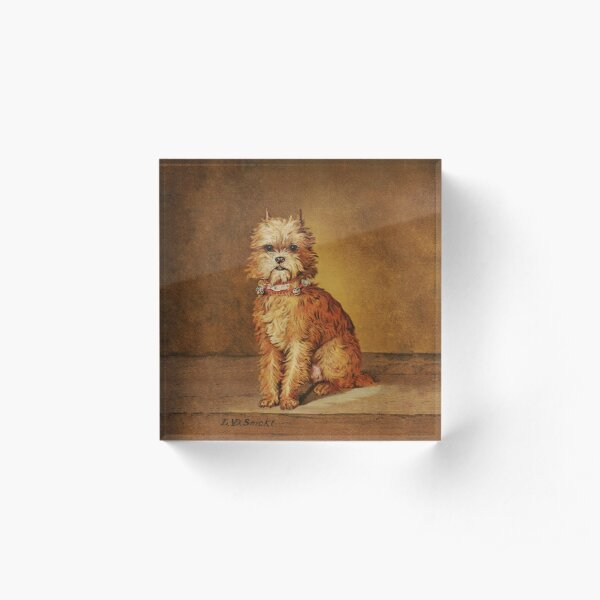 Brussels griffon vintage print of Coquette Acrylic Block