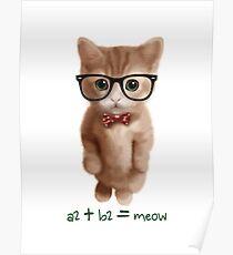 Algebra CAT Poster