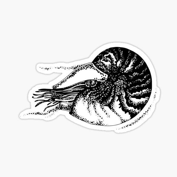 Nautile Sticker