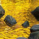 On Golden Pond by Marilyn Cornwell