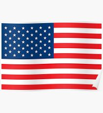 Flag USA Poster