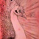 PinkPeacock by Amanda  Shelton
