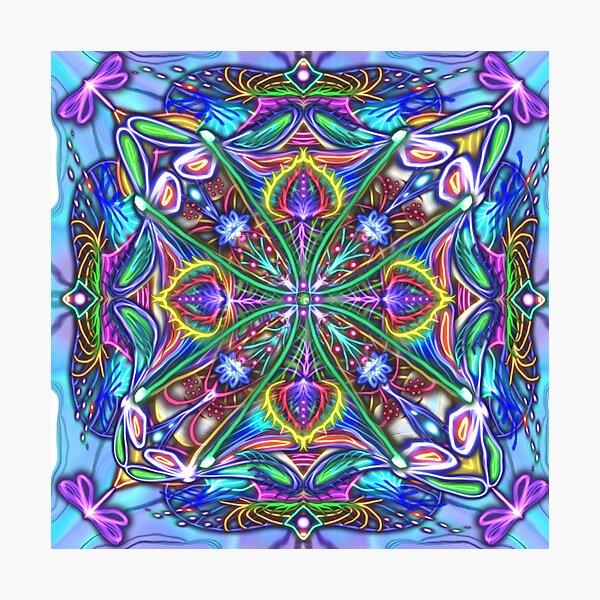 Dragonfly Kaleidoscope I Photographic Print