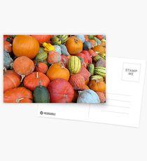 Pumpkins and Squashes Postcards