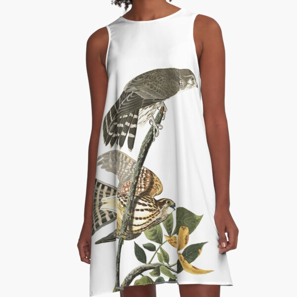 Merlin - John James Audubon A-Line Dress