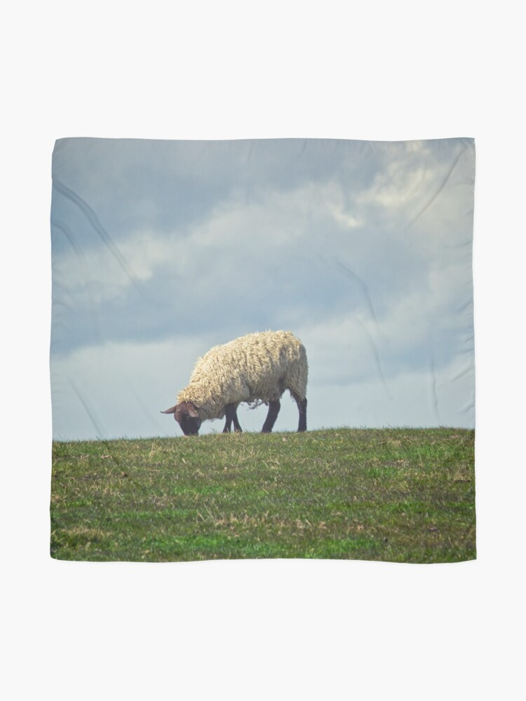 Alternate view of Sheep on the Hill Scarf