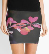 Fall Mini Skirt