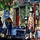 New Hope PA - Shopping Along Main Street by Susan Savad