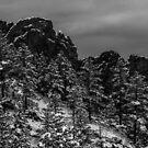 Snow Dusted Red Rocks by Shari Galiardi