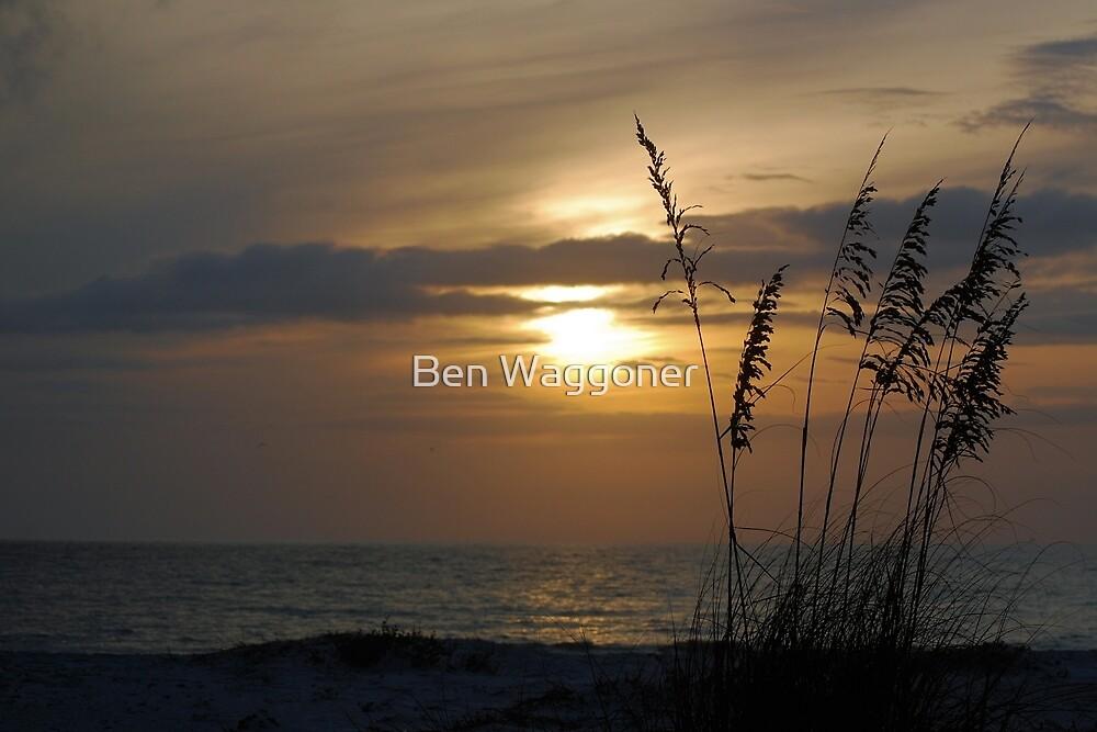 Sunset through sea oats by Ben Waggoner