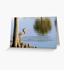 Great Blue Heron with small catch Greeting Card