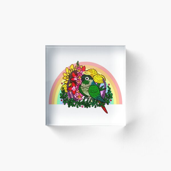 Green Cheek Conure Rainbow Bridge Reggie <3 Acrylic Block