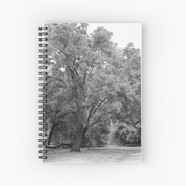 California Live Oak Series - 4 of 4 Spiral Notebook