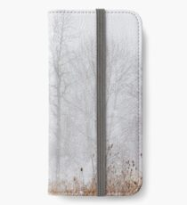 Winter storm on the mountain iPhone Wallet/Case/Skin