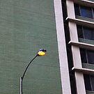 city light by nightowling