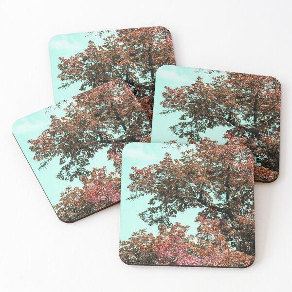 Turquoise sky Coasters (Set of 4)