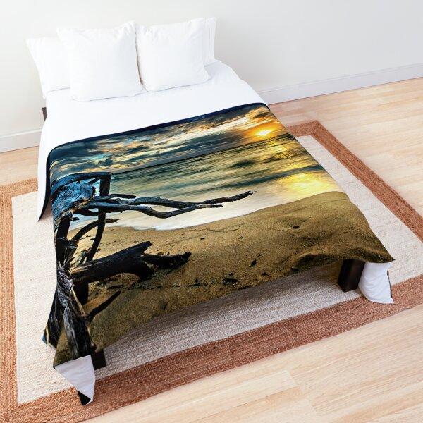 Coastal Beach Drift Wood Comforter