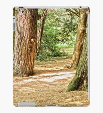 forest landscape iPad Case/Skin
