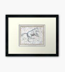 Celestial Ursa Major (1822) Framed Print