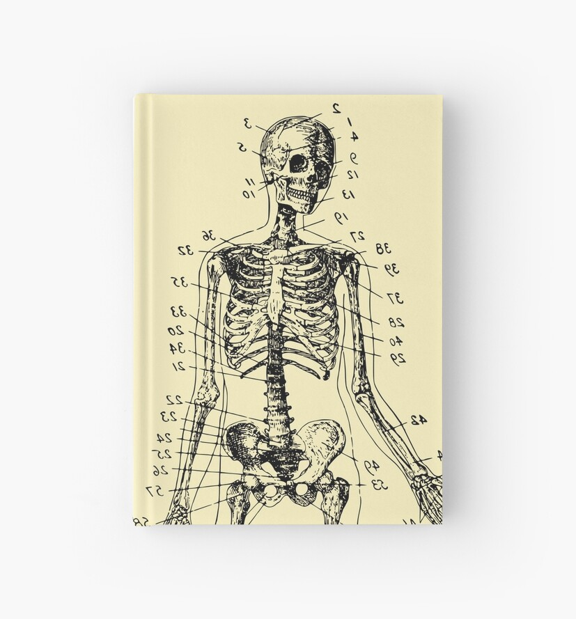 Anatomy The Skeletal System Verne Hardcover Journals By Schwaz