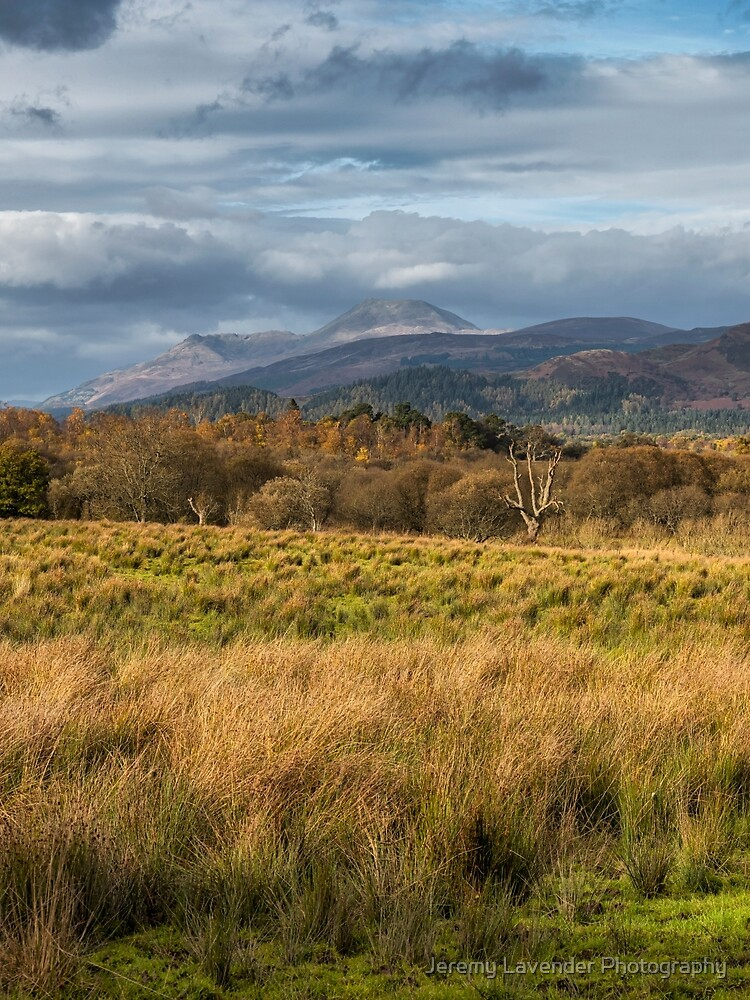 Scottish Scenery At Gartocharn by 242Digital