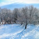 Snowy View by Zort70