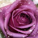Purple Bliss by AuntDot